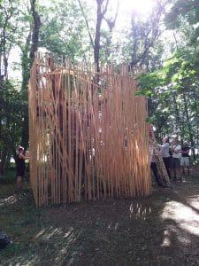 studio in the woods construction