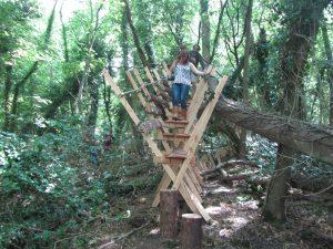 studio in the woods erect architectur